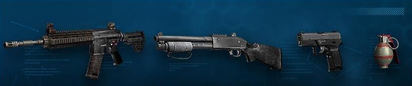 Assault weapons []