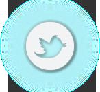 cta_twitter.png